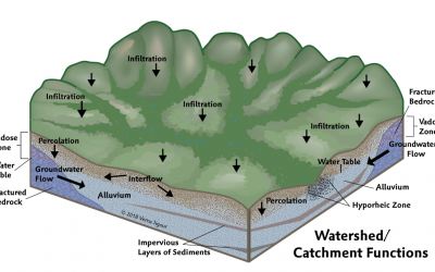 How Watersheds Relate to Groundwater